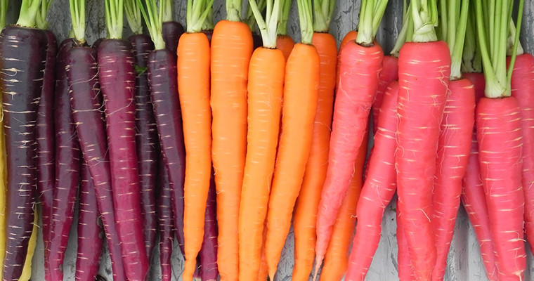 Amazing Benefits and Uses of Carrots For Your Skin, Hair and Health